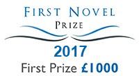 first_novel_banner